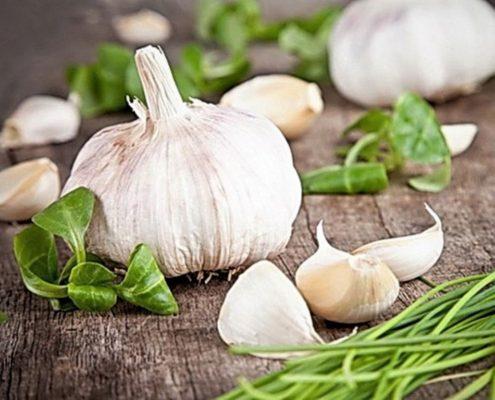 health benefits garlic